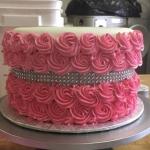 pink rose full